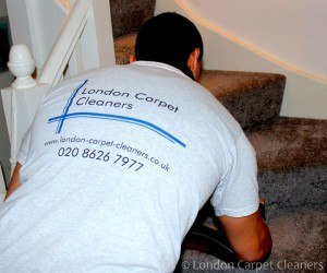 Basic tips for carpet cleaning and maintenance